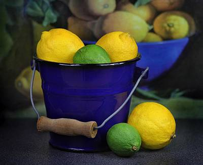 isolation of limonene from citrus fruits Bsc project university of leicester: extraction of limonene from citrus fruits isolation of limonene.