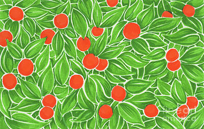 Mandarin Drawing - Citrus Pattern by Cindy Garber Iverson