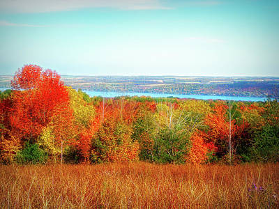 Photograph - City Flare Autumn Glory by Aimee L Maher Photography and Art Visit ALMGallerydotcom