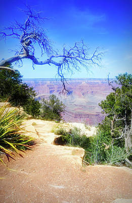 Photograph - City Flare Grand Canyon 2 by Aimee L Maher Photography and Art Visit ALMGallerydotcom