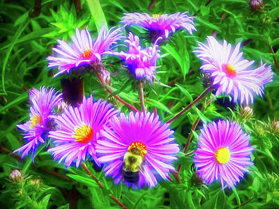 Photograph - City Flare Pollinating by Aimee L Maher Photography and Art Visit ALMGallerydotcom