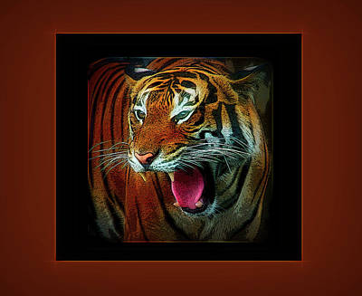 Photograph - City Flare Portrait Of A Tiger by Aimee L Maher ALM GALLERY