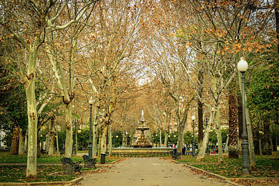 Photograph - City Park by Henri Irizarri