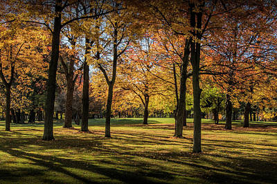 Photograph - City Park Scene In Autumn With Shadows by Randall Nyhof