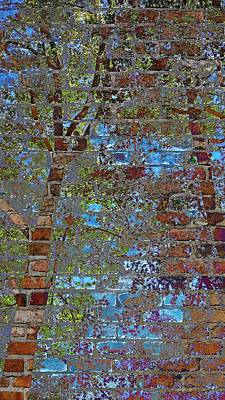 Photograph - City Trees by Kathy Barney