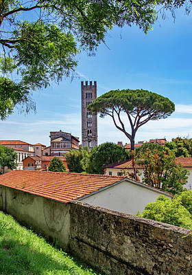Photograph - City Walls Of Lucca by Carolyn Derstine