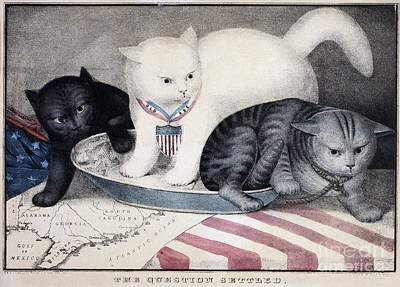 Civil War: Cartoon, C1865 Art Print by Granger