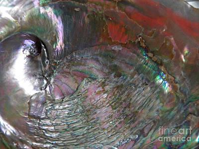 Abalone Wall Art - Photograph - Abalone Shell Abstract 3  by Sarah Loft