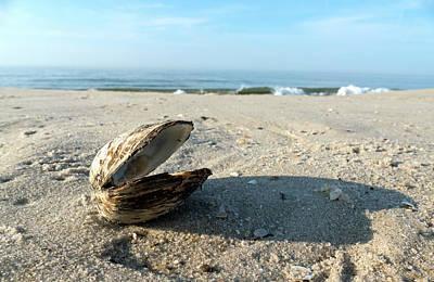 Photograph - Clam Shell At Cape May by Bill Jordan