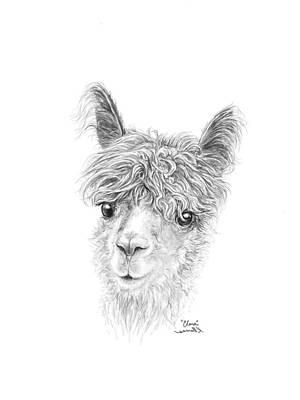 Drawing - Clara by K Llamas