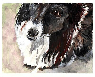 Painting - Clare Island Dog by Kathleen Barnes