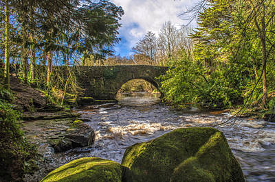 Photograph - Clare River County Limerick by Michael Quinlan
