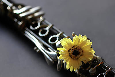 Photograph - Clarinet And Flower by Angela Murdock