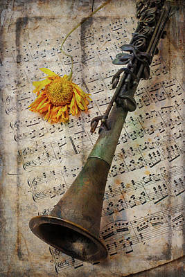 Sheet Music Photograph - Clarinet And Old Sunflower by Garry Gay