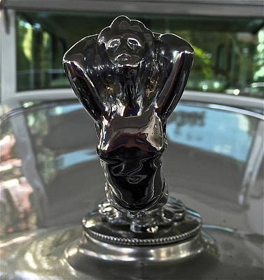 Photograph - Classic 1929 Cadillac Hood Ornament by Denise Mazzocco