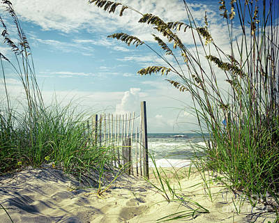 To The Beach Sea Oats Art Print