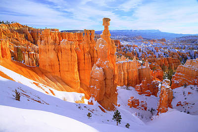 Winter Trees Photograph - Classic Bryce by Chad Dutson