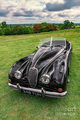 Photograph - Classic Jag by Adrian Evans