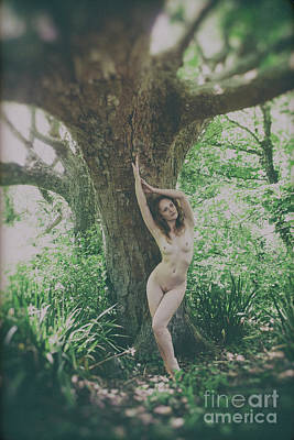 Photograph - Classic Nude By Tree by Clayton Bastiani