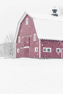 Photograph - Classic Red New England Barn During A Snowstorm by Edward Fielding