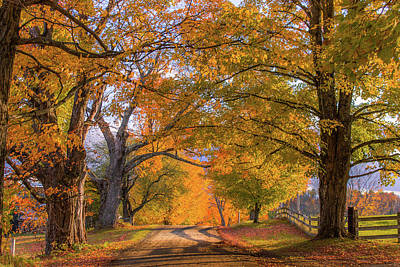 Photograph - Classic Vermont Fall by Tim Kirchoff