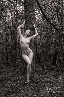 Photograph - Classical Nude In The Woods by Clayton Bastiani