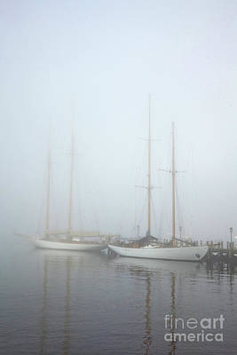 Photograph - Classics In The Fog by Butch Lombardi