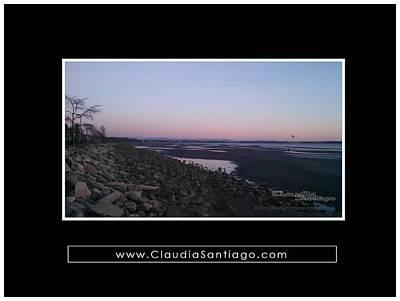 Photograph - Claudia Santiago Photography - Album A1 by Claudia Santiago