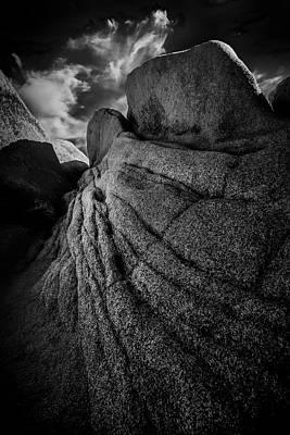 Joshua Tree Np Photograph - Clawed by Joseph Smith