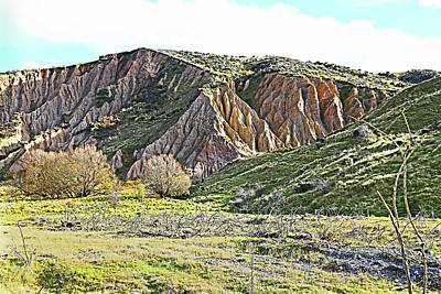 Photograph - Clay Cliffs Near Danseys Pass by Nareeta Martin