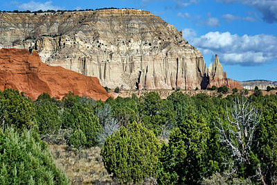 Photograph - Claystone - Sandstone - Kodachrome Basin by Nikolyn McDonald