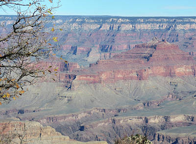 Photograph - Clear Day At The South Rim by Laurel Powell
