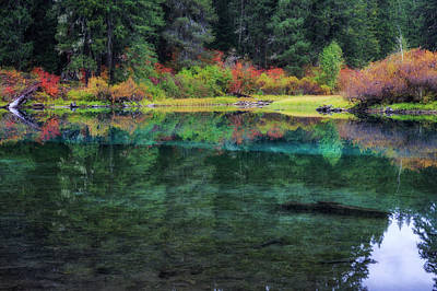 Photograph - Clear Lake Reflections by Cat Connor