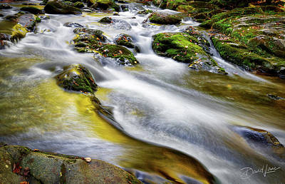 Photograph - Clear Mountain Water  by David A Lane