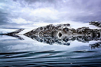 Photograph - Clear Reflections by Maria Coulson