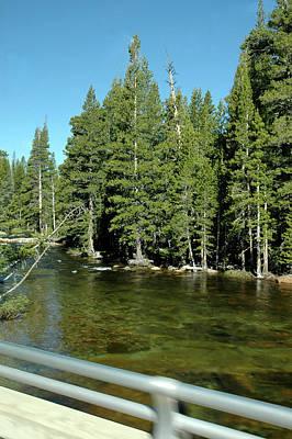 Forest Photograph - Clear River Water Yosemite by LeeAnn McLaneGoetz McLaneGoetzStudioLLCcom