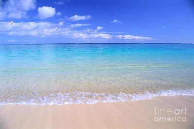 Bill Brennan Photograph - Clear Shoreline by Bill Brennan - Printscapes