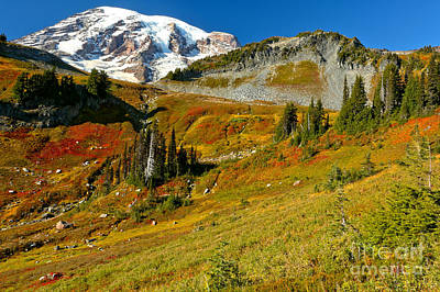 Photograph - Clear Skies Over Paradise Meadows by Adam Jewell