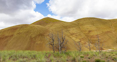 Photograph - Clear Sky At Painted Hills by Jean Noren