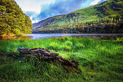 Photograph - Clear Waters Of Glendalough by Debra and Dave Vanderlaan