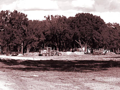Photograph - Clearcutting by D Hackett