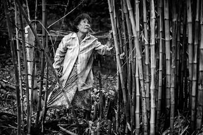Valentines Day - Clearing Bamboo by Lee Craker