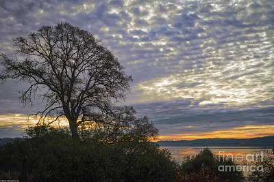 Photograph - Clearlake Morning by Mitch Shindelbower
