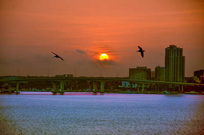 Pelican Digital Art - Clearwater At Sunrise by Bill Cannon