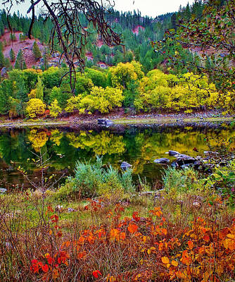 Photograph - Clearwater Autumn by Brad Stinson