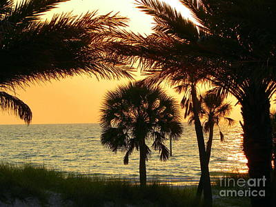 Photograph - Clearwater Beach Sunset by Terri Mills