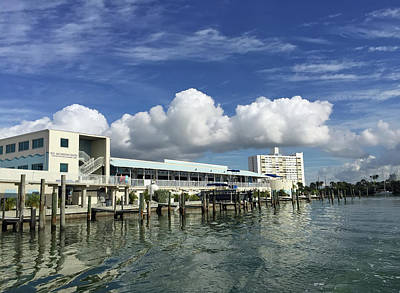Photograph - Clearwater Marine Aquarium Seaside by Aimee L Maher Photography and Art Visit ALMGallerydotcom
