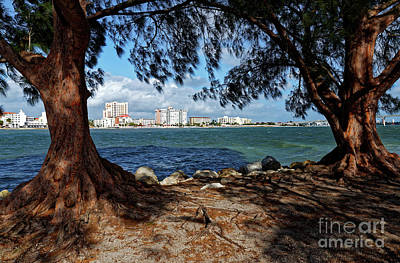 Photograph - Clearwater Pass 2 by Paul Mashburn