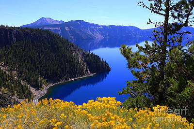 Photograph - Cleetwood Cove At Crater Lake by Marty Fancy