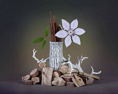 Driftwood Photograph - Clematis Blossom by Tom Mc Nemar